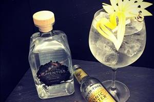 The Ghentist gin 70cl